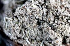 Buy 1 lb Imphepho (Helichrysum petiolare) Shredded Herb