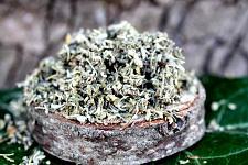 Buy 14g Damiana Leaf (Turnera diffusa) Certified Organic & Kosher Certified