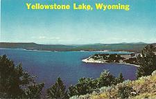 Buy YELLOWSTONE LAKE POSTCARD SHORELINE AERIAL WYOMING