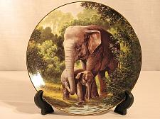 Buy Animal Collector Plate Elephant Will Nelson W.S. George Endangered