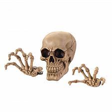 Buy *17295U - Skeleton Head & Hands Wall Decor Set