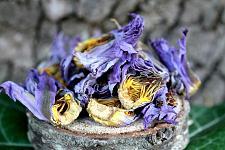 Buy 2 oz Blue Lotus Dried Whole Flower (Nymphaea Caerulea)
