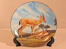 Buy Animal Collector Plate Slender Horned Gazelle Will Nelson Endangered