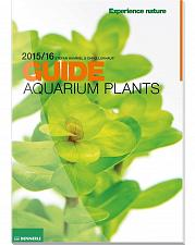 Buy Dennerle Aquarium Pflanzen Guide 2015/2016 Pflanze - English