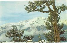 Buy Pikes Peak Winter Snow Colorado Vintage Postcard