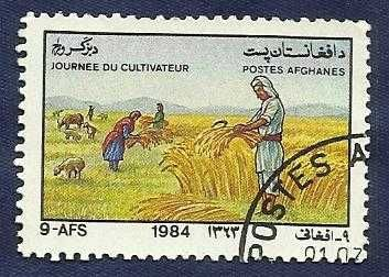 1984 AFGHANISTAN FARMERS DAY ANIMAL TRACTER WHEAT