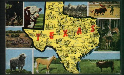 Texas - multi view