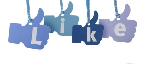 2500 USA Facebook likes /subs to your facebook fan