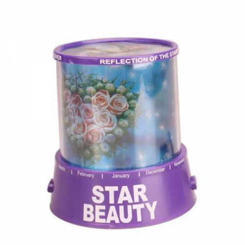 Bicycle Lover Night Light Star Projector