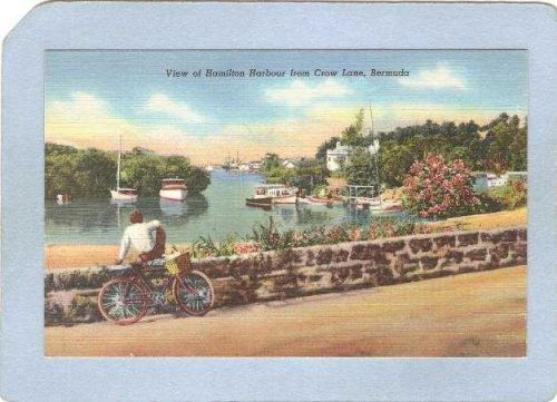 BMU Hamilton Sport Bicycle Bermuda View Of Hamilton Harbour From Crow Lane~314