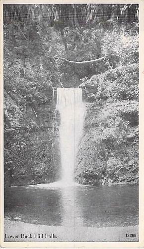 Lower Buck Hill Falls, Canadensis, PA Vintage Postcard