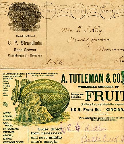 Produce - Seeds & More - From 1890s - 1950s - See Scans