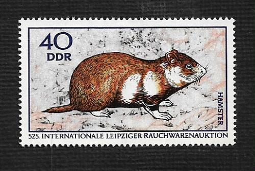 German DDR MNH Scott #1175 Catalog Value $.25