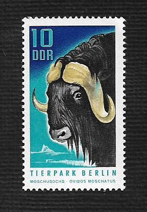 German DDR MNH Scott #1243 Catalog Value $.30