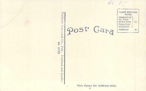Alaska Yukon Pacific Exposition 1909 Seattle Official Vintage Postcard