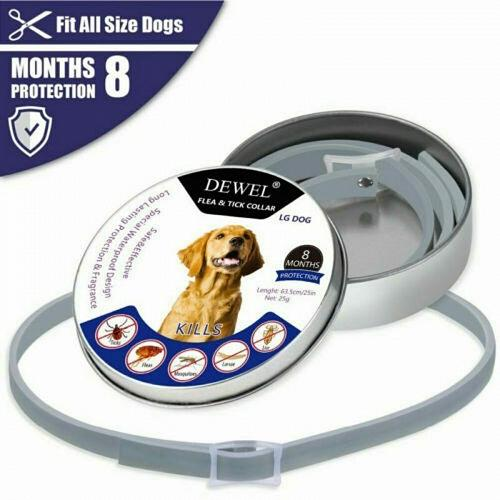 Brand New Style 63cm Dewel Dog Lovely Flea and Tick Collar for Large Dog 8 Month