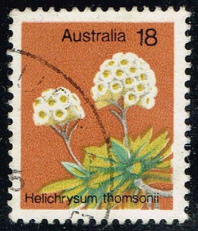 Australia #564 Helichrysum Thomsonii; Used (0.25) (4Stars)  AUS0564-09XBC