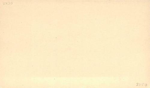 UX20,Mint US Postal Card