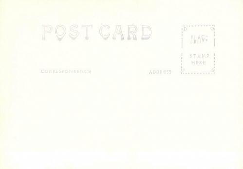 Mount Massive Altitude 14, 404 Ft. Near Leadville Real Photo Vintage Postcard