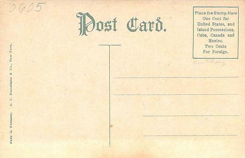 1907 South Carolina State Buildings Jamestown Exposition Unused Postcard