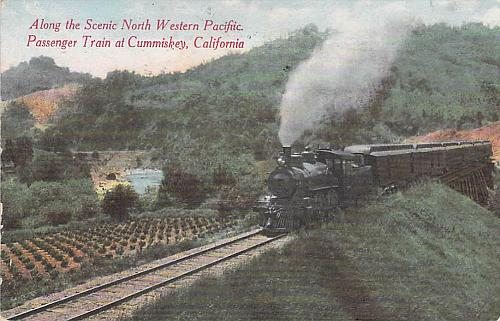 Along the Scenic North Western Pacific Passenger Train, Calif. Vintage Postcard