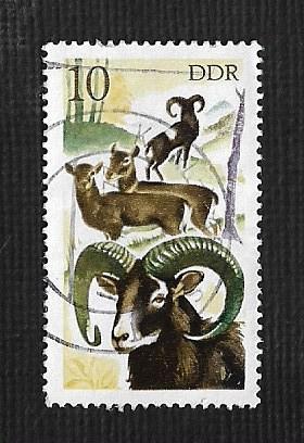 Germany DDR Used Scott #1858 Catalog Value $.25