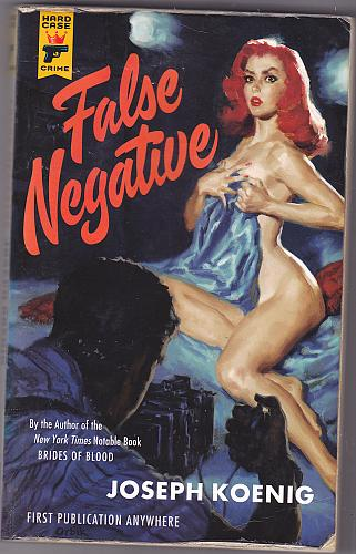 False Negative (Hard Case) by Joseph Koenig 2012 Paperback Book - Good