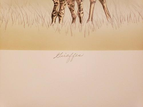 Mary Ann Lis - Artist Proof Signed Lithograph - 'Giraffes'