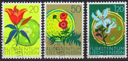 LIECHTENSTEIN [1970] MiNr 0521 ex ( O/used ) [01] Blumen