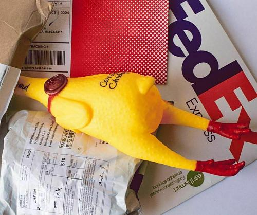 Personalize hand written messages RUBBER CHICKEN CARRIER SERVICE FREE DELIVERY