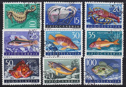 JUGOSLAVIA [1956] MiNr 0795-03 ( O/used ) Fische