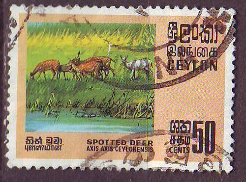 CEYLON SRI LANKA [1970] MiNr 0397 ( O/used ) Tiere