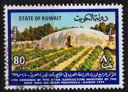KUWAIT [1979] MiNr 0823 ( O/used )