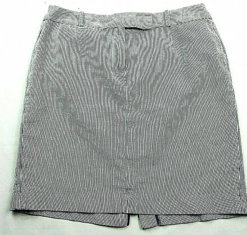 Talbots A Line Petite Skirt Size 14WP Blue White Striped Front Zip Belt Loops