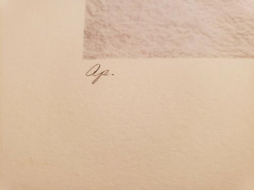 Mary Ann Lis - Artist Proof Pencil Signed Lithograph - Koalas