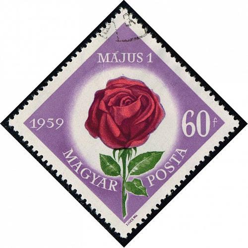 Hungary #1222 Rose; CTO (0.25) (2Stars) |HUN1222-01