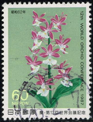 Japan #1731 Calanthe discolor Orchid; Used (3Stars) |JPN1731-01XFS