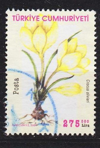 TÜRKEI TURKEY [2000] MiNr 3245 ( O/used ) Blumen