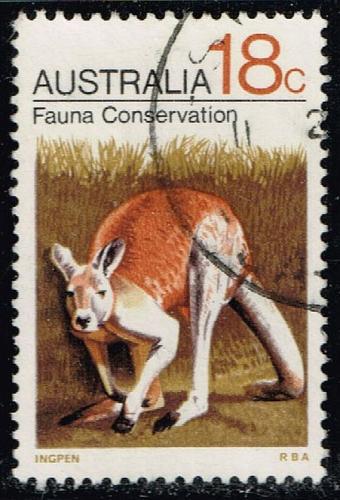 Australia #502 Kangaroo; Used (0.35) (4Stars) |AUS0502-02XBC