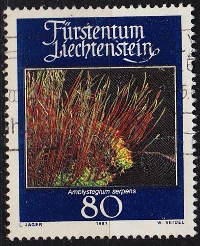 LIECHTENSTEIN [1981] MiNr 0779 ( O/used )
