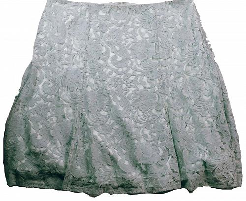 NWT Roz & Ali Women's A Line Skirt Size 22 Blue Floral Lace Side Zip