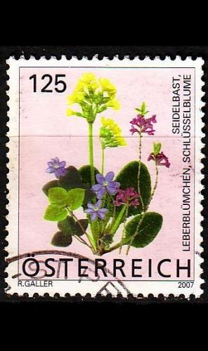 ÖSTERREICH AUSTRIA [2007] MiNr 2633 ( O/used ) Blumen