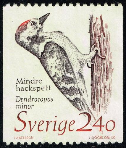 Sweden #1725 Lesser Spotted Woodpecker; Used (3Stars) |SVE1725-04