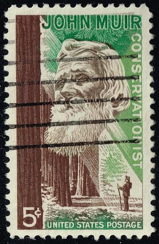 US #1245 John Muir & Redwood Forest; Used (3Stars) |USA1245-05XRS