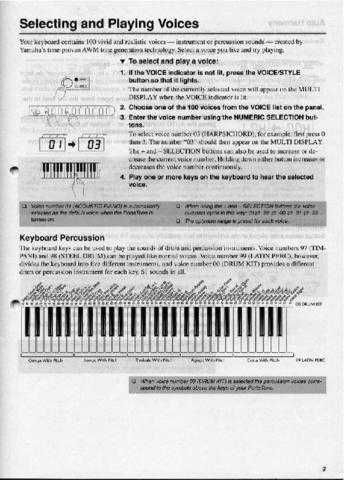 Yamaha PSR215E 2 Operating Guide by download Mauritron #249296