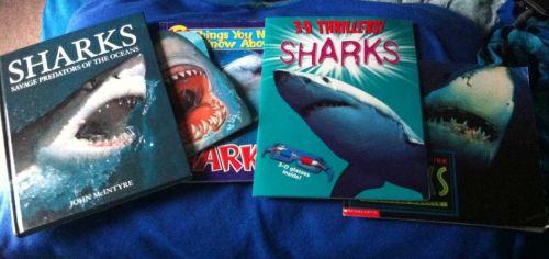 Lot of 5 Educational Shark Children's Books Used