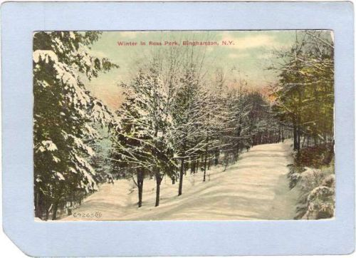 New York Binghamton Winter In Ross Park ny_box2~517