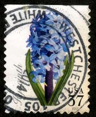 USA 2005, scot # 4066, Used