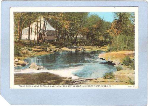 New York Allegheny State Park Trout Brook Near Buffalo Camp & Park Restaur~640