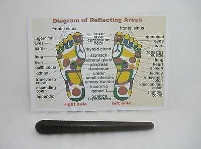 FOOT REFLEXOLOGY MASSAGE STICK WOOD TOOL THAI ACUPRESSURE PRESS + 1 FREE CHART